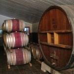 Wijnvaten bij Simonsig in stellenbosch