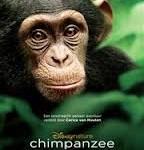 Chimpanzee, filmafbeelding