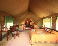 Mwagusi Safari Camp in Tanzania