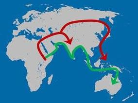 Afrika, migratieroutes mensen